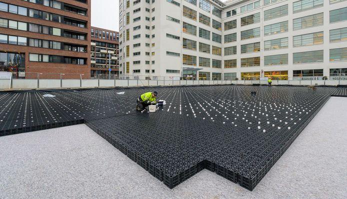 De aanleg van de waterberging onder het Prins Clausplein in Eindhoven. Die vangt het regenwater op. Dat kan door de nieuwe beplanting die in april klaar moet zijn, hergebruikt worden.