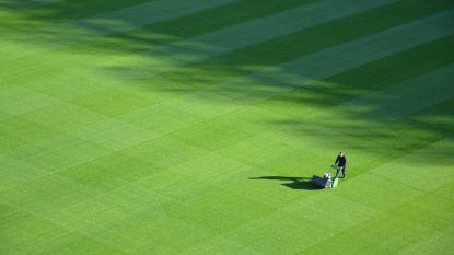Tijd om het gras af te doen! Dit zijn de beste grasmaaiers