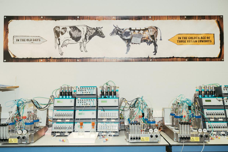 In het Gentse labo van Those Vegan Cowboys worden onderzoekers constant herinnerd aan het ultieme doel: de klassieke koe vervangen door een machine. Beeld Illias Teirlinck