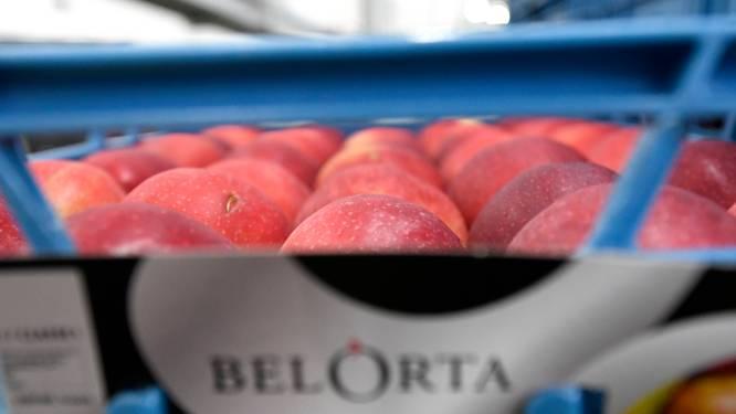Hagelandse gemeenten zijn sterkhouder op vlak van akkerbouw- en fruitteelt