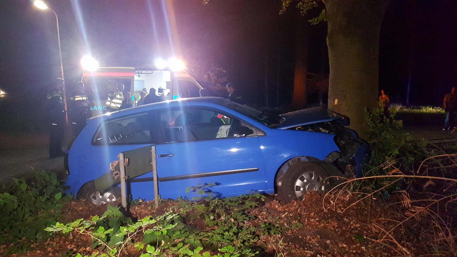 De auto botste tegen een boom langs de Dalmsholterdijk.