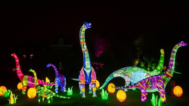 Zoo van Planckendael toont beelden eerste lichtfestival: 360 objecten kleuren Dino Light