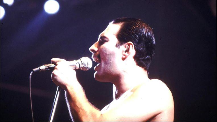 Freddie Mercury. Beeld photo_news