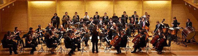Amazing Haydn: Haydn-Akademie Eisenstadt concerteert op zondag 31 oktober om 15 uur in de Begijnhofkerk.