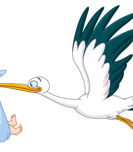 Ouders van tweeling hebben primeur in Tiel met online aangifte van geboorte