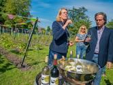 Krikke dacht dat ze Den Haag kende, tot ze over de stadswijngaard in Moerwijk hoorde