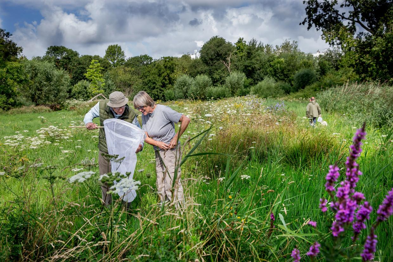 Een groep wetenschappers struint een week lang door het Vondelpark.