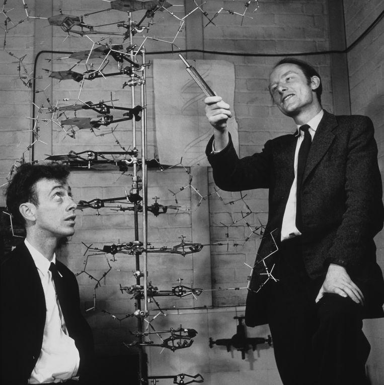 James Watson en Francis Crick met hun DNA-model.