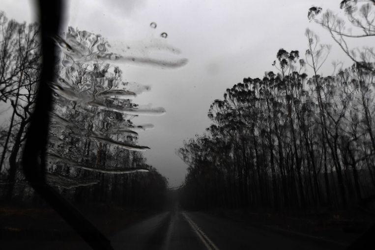 Regen in de buurt van Nowra, NSW.