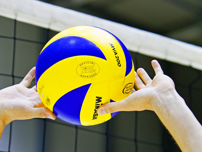Volleybal stock pzc