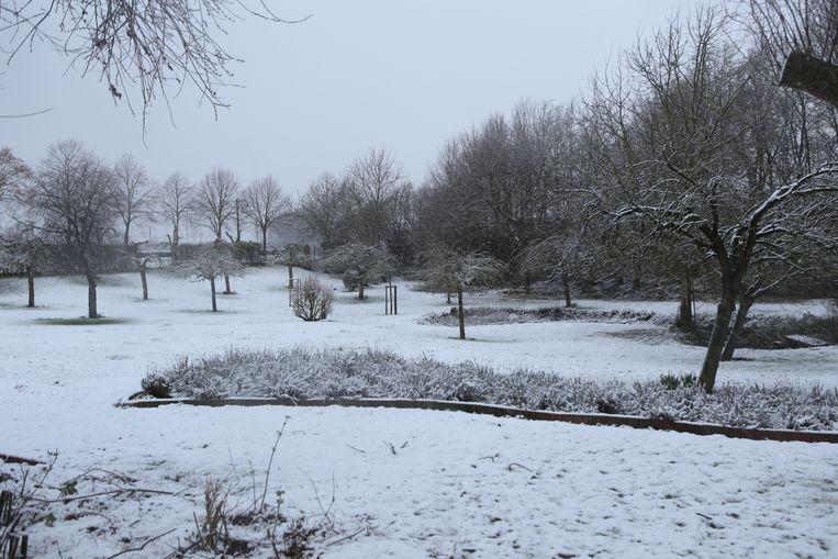 De eerste sneeuw levert wel mooie beelden op.