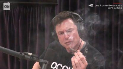 Tesla-baas Elon Musk: van goeroe naar ongeleid projectiel
