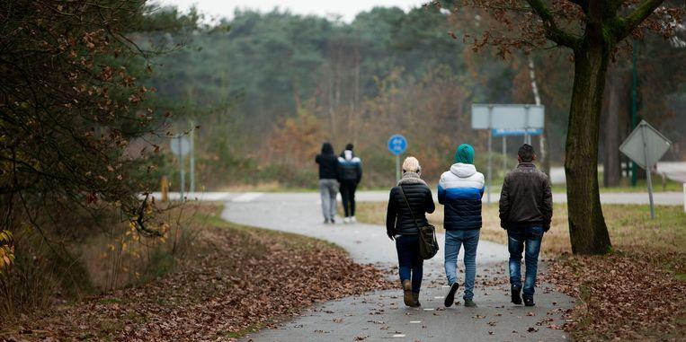 Een asielzoekerscentrum in het Nederlandse Budel. Beeld Merlin Daleman / HH