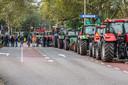 """Straten stonden bomvol met trekkers in Zwolle. Precies om dat moment, om 11.55, kreeg de wijkbewoonster haar parkeerbon. ,,Heel klierig."""""""