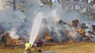 Vijfhonderd balen graskuil gaan in vlammen op