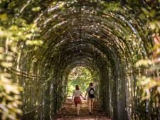 Geen misverstand: Landgoed Steenenburg 'gewoon' open voor wandeling