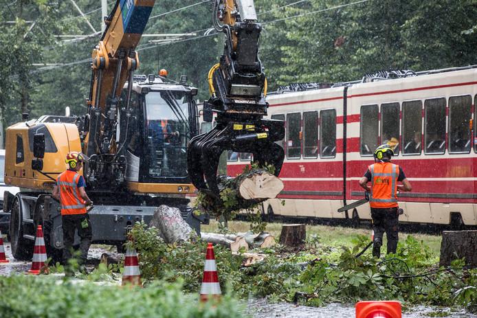 De bomenkap langs de Scheveningseweg leidde tot veel protest.