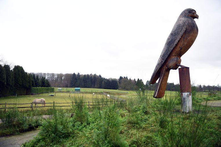 Aan onthaalpoort de Torenvalk, tussen het Meerdaalwoud en het Heverleebos.