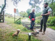 Ook zorg over drukte in natuur bij Nijmegen: 'Loslopende hond moet op het pad blijven'