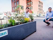 Geen boete maar bonus voor rijgedrag: buurt krijgt plantenbakken
