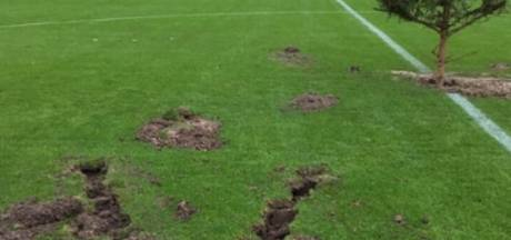 Voetbalhumor? Boom op middenstip in Oldebroek