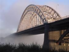 Benedenstad in het zonnetje: Zilveren Waalbrugspeld voor Els Stouthamer en Henk Lamers