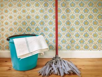 Natuurlijke manieren om spinnen uit je huis te weren