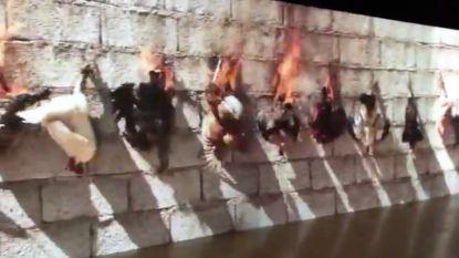 Is dit kunst? Video van levend verbrande kippen ontlokt woede van dierenliefhebbers