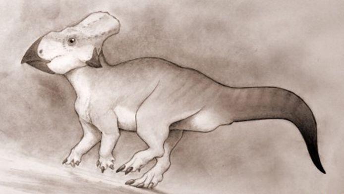 Een impressie van hoe de dinosaurus er zou kunnen uitgezien hebben.