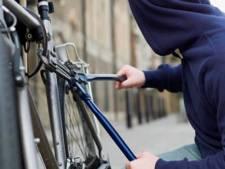 Eigenaar ziet gestolen fiets rijden in Gouda, politie pakt dief