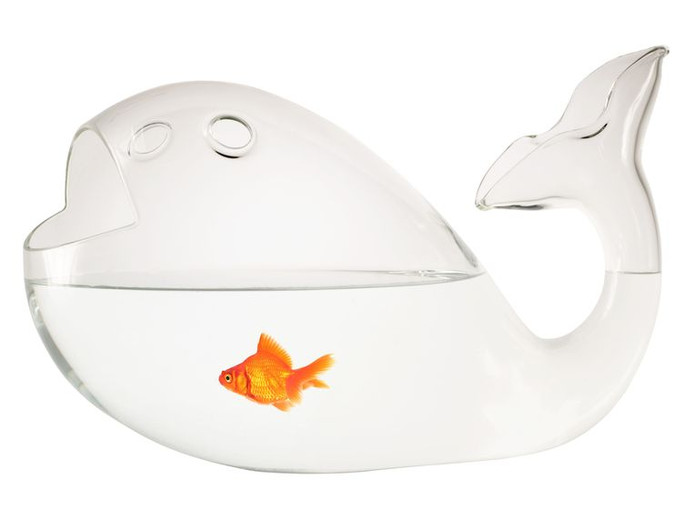 Kitsch Aquarium Giona Big. Richtprijs: 408 euro, www.madeindesign.com