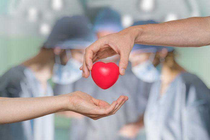 En Belgique, 1.300 personnes attendent une greffe d'organe. L'an dernier, 348 dons post-mortem ont eu lieu, contre 321 en 2016, soit un chiffre record.