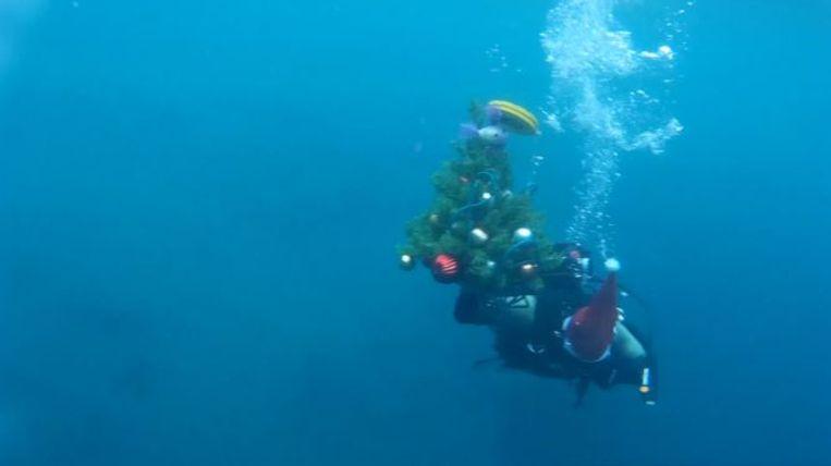 Al veertig jaar lang komt er jaarlijks een kerstboom op de bodem van dit Russische meer.