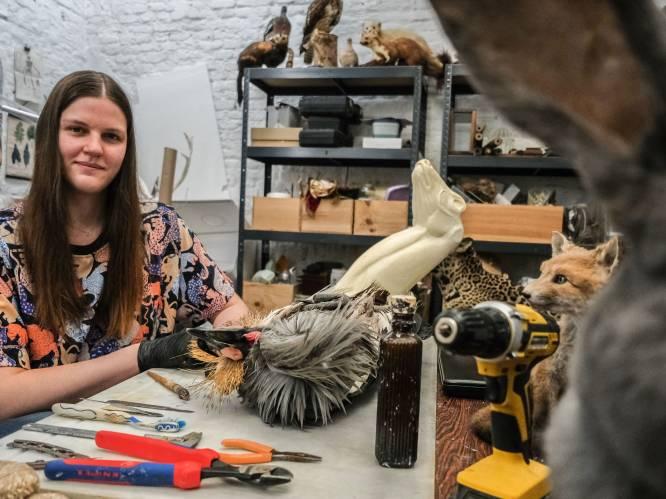 """""""Het begon met een dode roofvogel op kot, die ik bewaarde op de diepvriespizza's"""": Frauke (27) is eerste taxidermist in centrum van Kortrijk"""