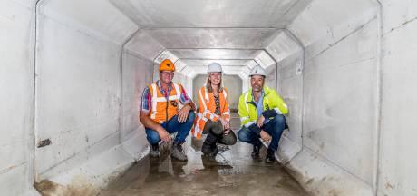 Oldenzaal wil regenwater beter afvoeren: 'Zaag je regenpijp af'