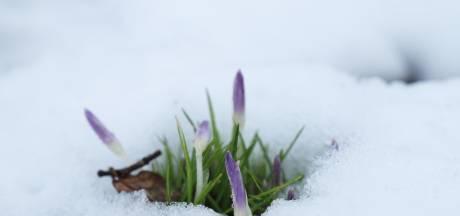 Schilder in problemen door uitglijder in sneeuw: taakstraf