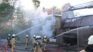 Zware brand verwoest woning van 85-jarige dame: Slachtoffer en haar hond kunnen op tijd ontkomen