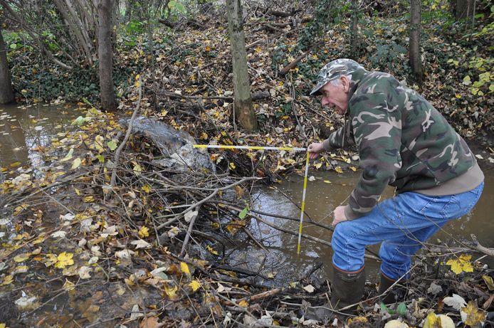 Louis ontdekte de beverdam in het Walenbos een tijdje geleden tijdens een wandeling, intussen werd de dam afgebroken.