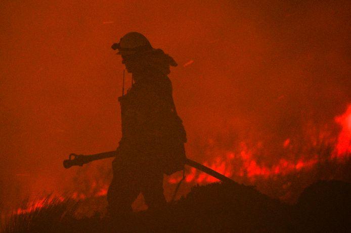 Bosbrand, foto ter illustratie