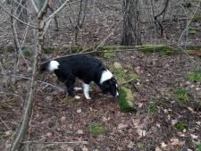Politie snapt verdriet om dode hond Tycho maar kan niets doen, baasje Henny is verdrietig en bang
