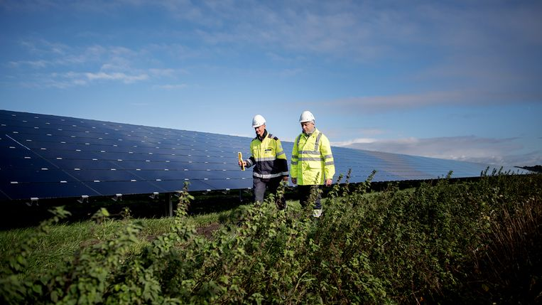 In de Brabantse gemeente Steenbergen bestaan plannen om langs de snelweg A4 een zonnepark te bouwen met de naam Prinslandsezon. Afhankelijk van het ontwerp kan het 118.000 panelen groot worden. Beeld Statkraft