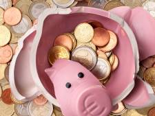 Meevaller uit Den Haag: begroting Terneuzen in de plus