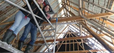 Onder een foeilelijk stalen dak komt straks 'n parel van een dwarsdeelschuur tevoorschijn