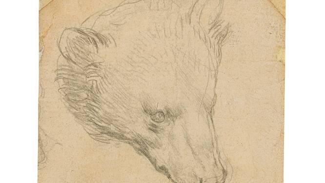 Berenschets van Leonardo da Vinci meer dan 13 miljoen euro waard