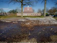Narcissen langs de Hogeweg en nog steeds ligt er op de parkeerplaats een gletsjer van sneeuw