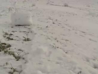 Waar komen mysterieuze sneeuwballen op dit veld in Tsjechië vandaan?