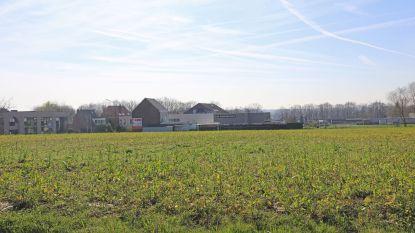 Ternat krijgt er nog eens 30 voetbalvelden aan bedrijvenzones bij: Assesteenweg wordt verkeerspuinhoop