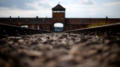 Schandaal in Auschwitz: Israëlische tiener plast op herdenkingsmonument