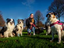 Kim (20) heeft haar eigen hondenuitlaatservice: 'Met dieren werken is mooi'