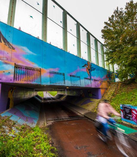 Verdachten van brute overval in fietstunnel Enschede in november voor de rechter